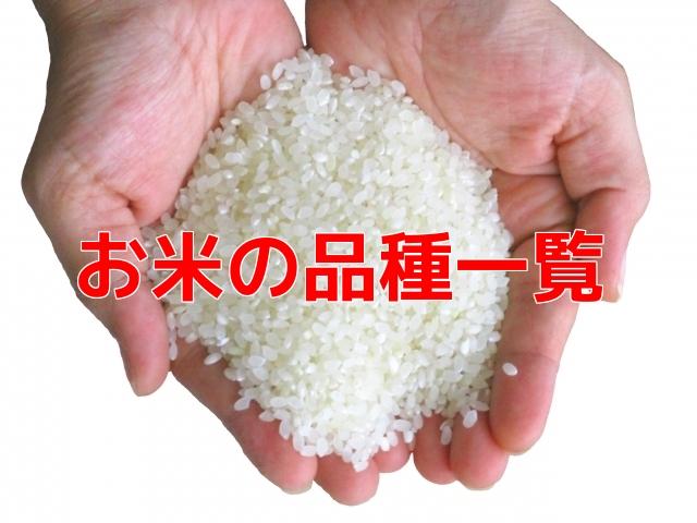 お米の品種一覧